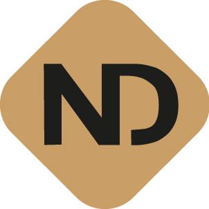 nicolas dusseaut webmaster bordeaux